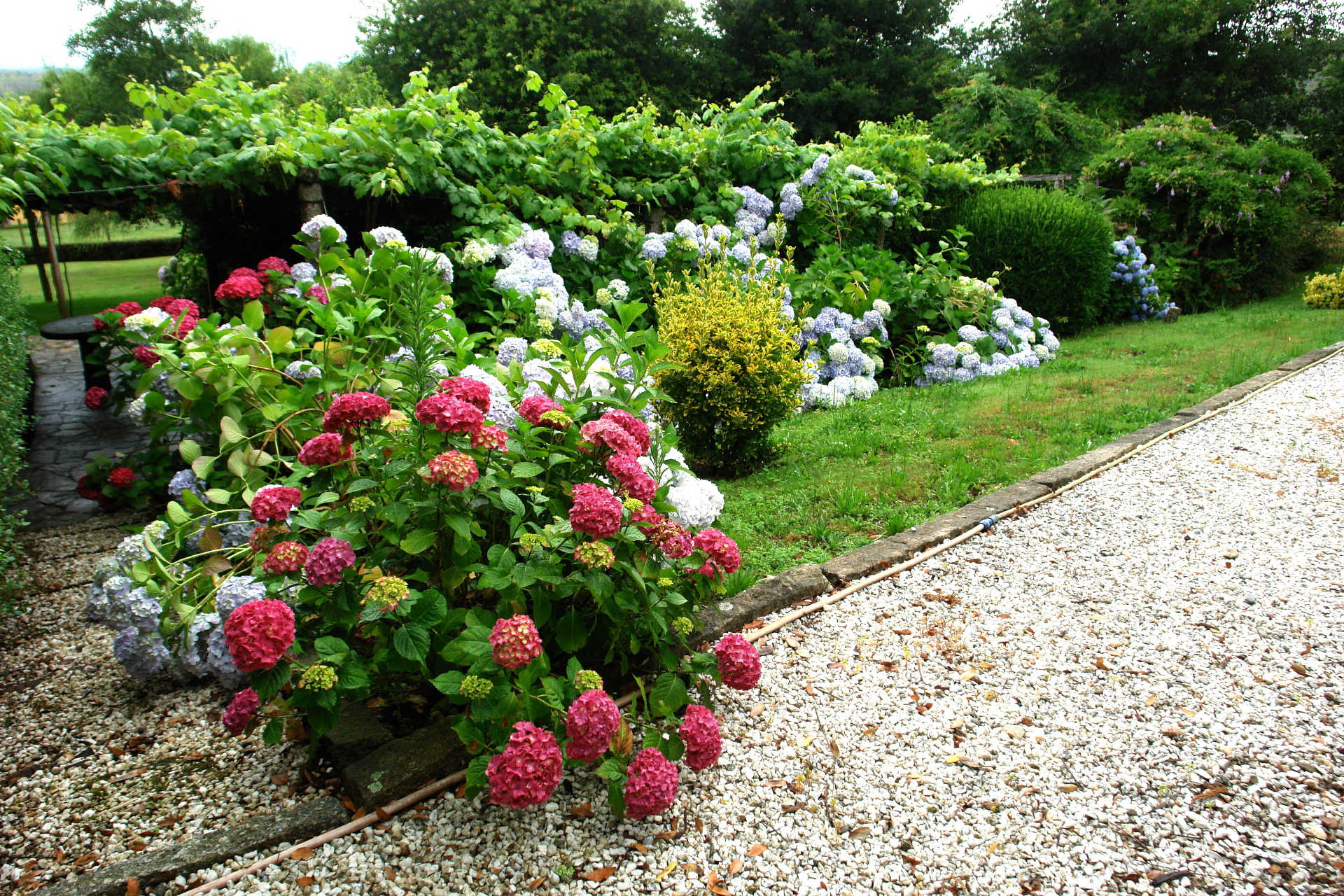Jardines exteriores rosa casa rural as seis chemineas