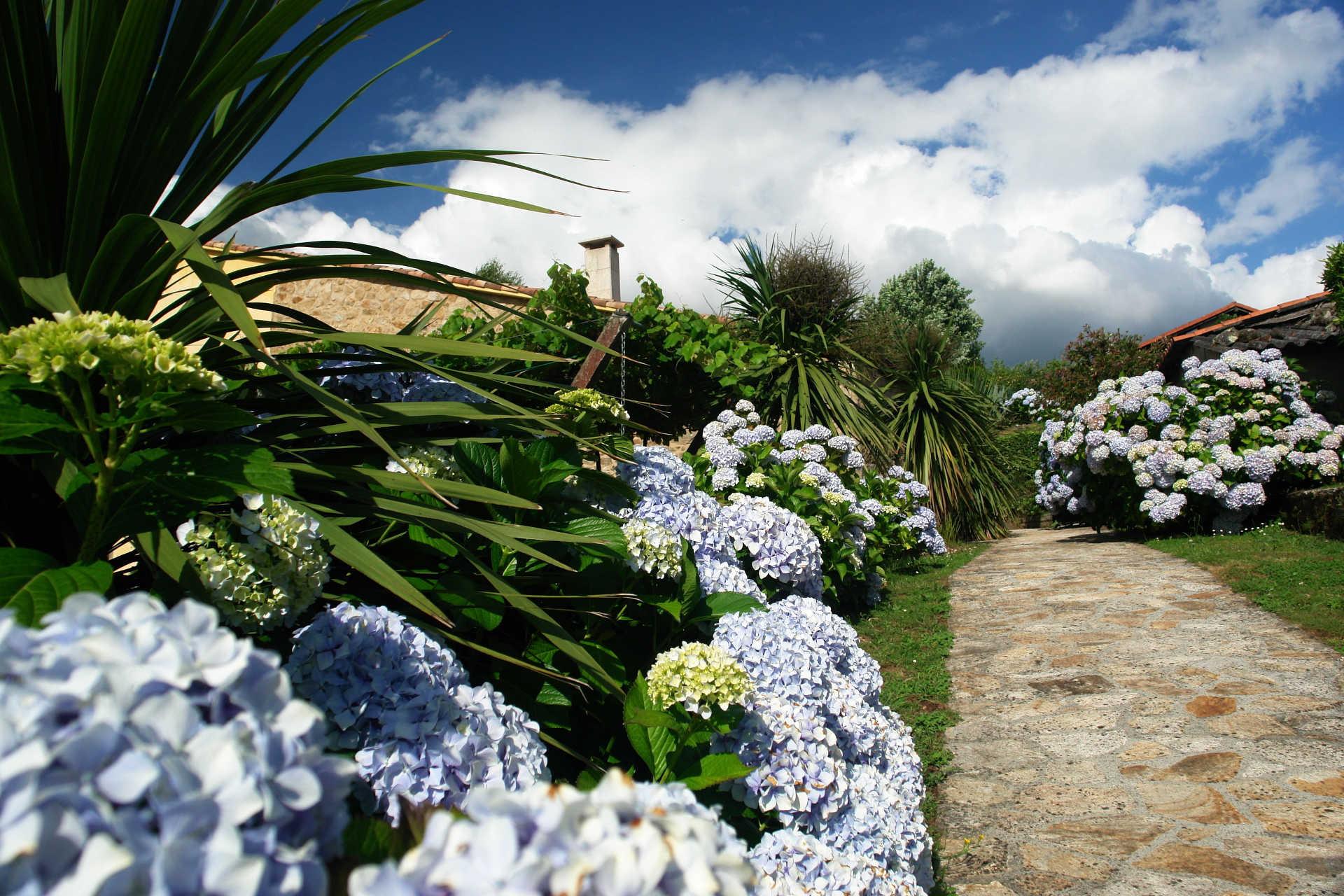Jardines exteriores gardenias casa rural as seis chemineas
