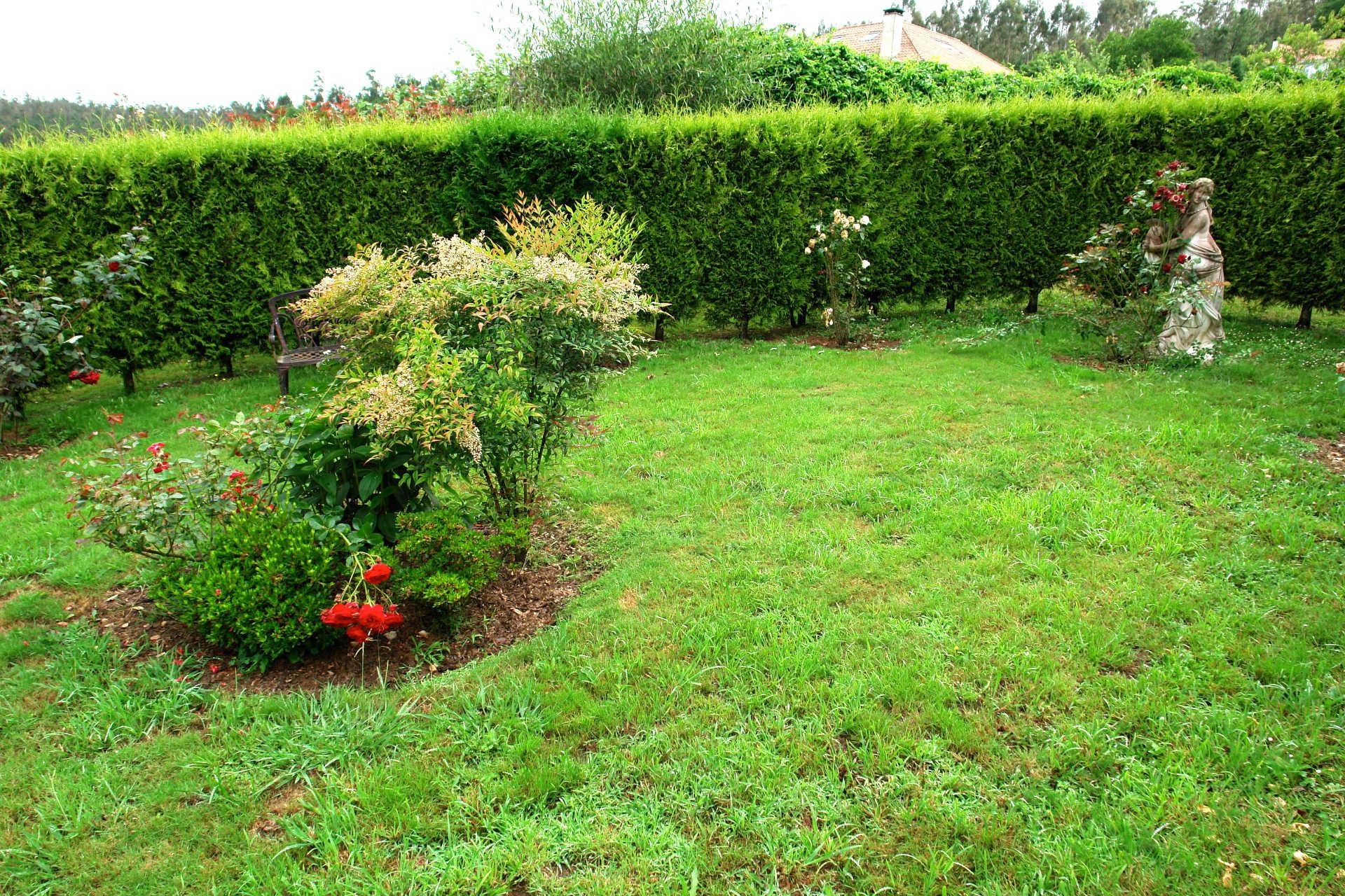 Jardines exteriores arbusto casa rural as seis chemineas for Casa rural mansion terraplen seis